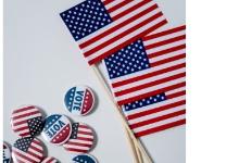 USA flag VOTE pin