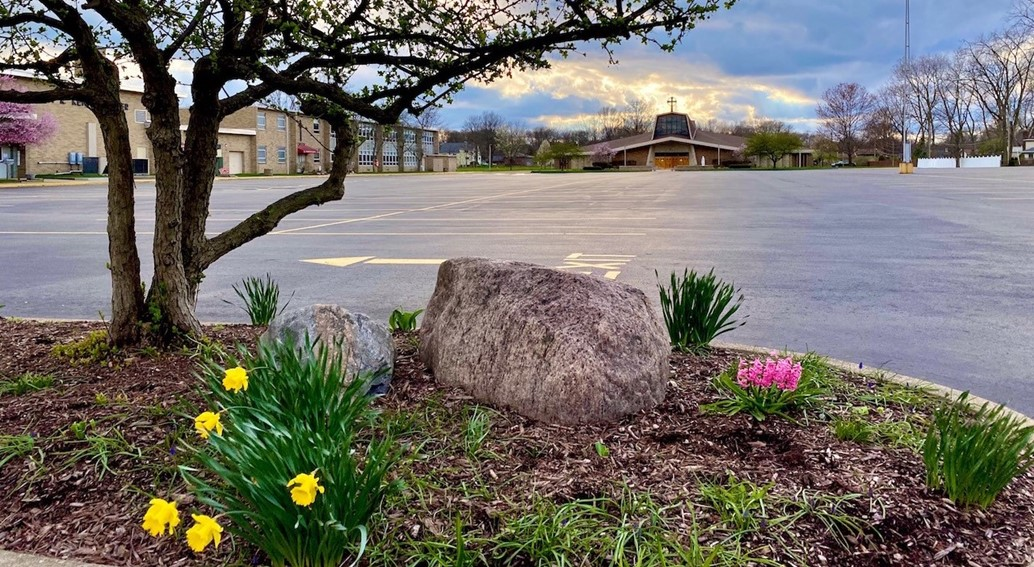 spring blooms in the empty parking lot with the church in the distance during COVID-19 time