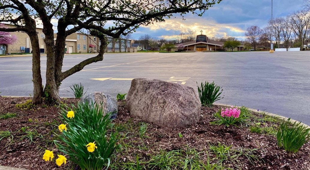 spring blooms in an empty parking lot with the church in the distance
